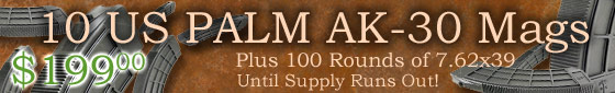 10 US PALM Mags with 100rnds Ammo